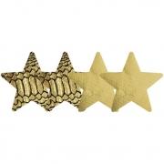 Набор из золотых пэстисов-звезд Glam-o-Rama