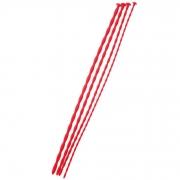 Набор из 4 красных уретральных зондов TOYFA Red (красный)